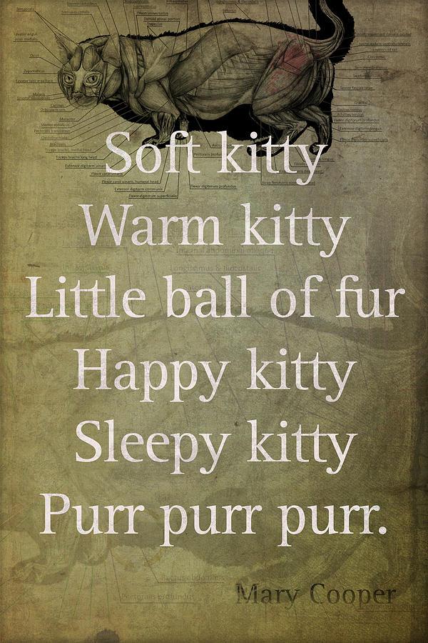 Soft Kitty Warm Kitty Poem Quotation Big Bang Theory