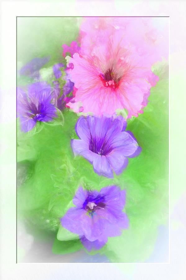 Soft Petunias by Natalie Rotman Cote