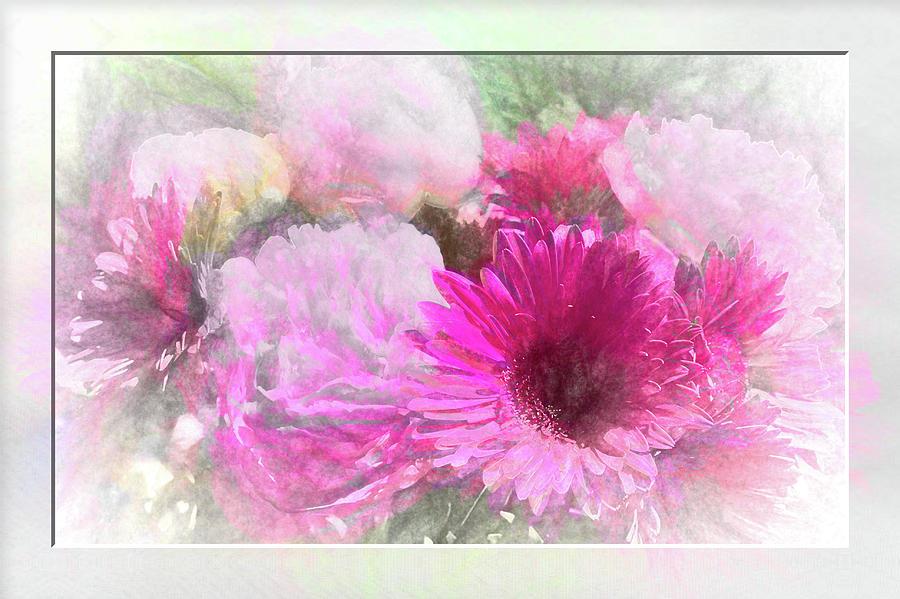 Soft Pink Gerbera by Natalie Rotman Cote