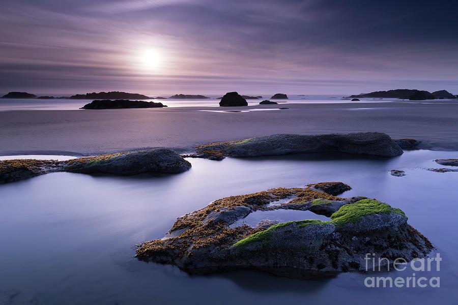 Soft Sunset Photograph