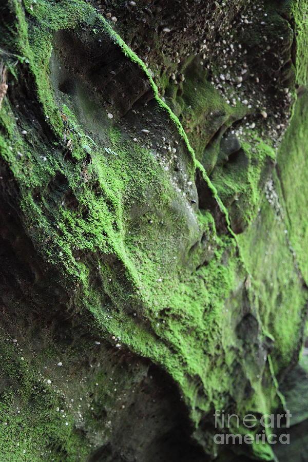 Rocks Photograph - Soften The Moment by Amanda Barcon