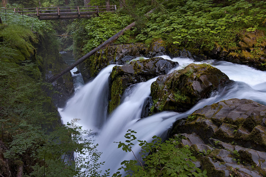 Sol Duc Falls in Olympic National Park by Rick Pisio