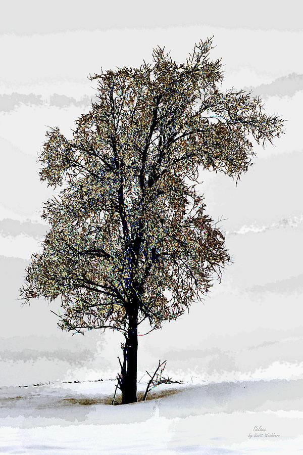 Tree Digital Art - Solace by Scott Washburn