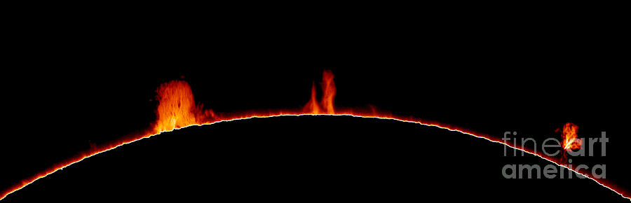 Sun Photograph - Solar Prominences by Greg Piepol and Photo Researchers