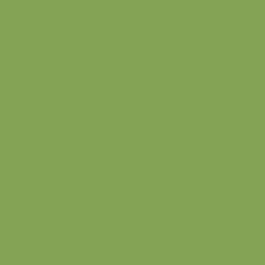 solid moss green color digital art by garaga designs
