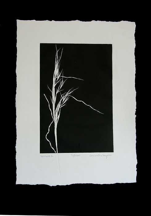 Solitude Print by Amanda Wymer