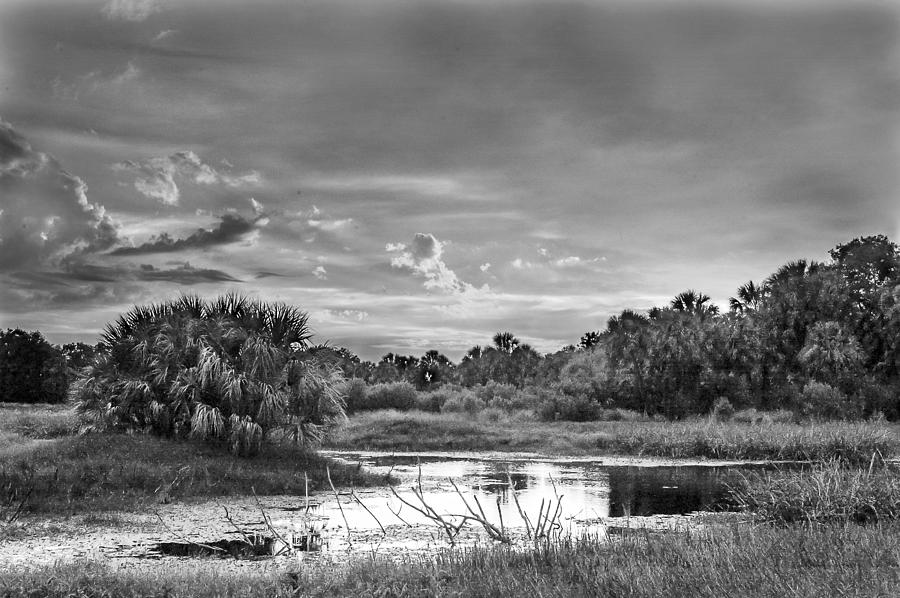 Landscape Photograph - Solitude Bw by Norman Johnson