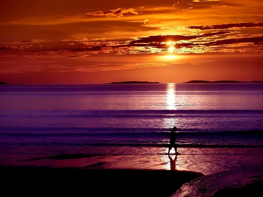 Maine Photograph - Solitude by Daniel Berman
