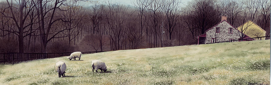 Sheep Painting - Solitude by Denny Bond