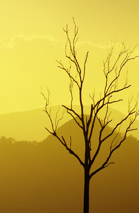 Landscape Photograph - Solitude by Holly Kempe