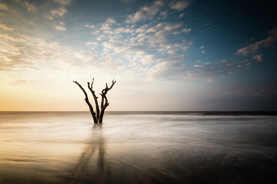 Solitude by Ivo Kerssemakers