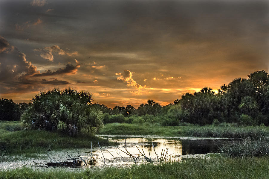 Sunset Photograph - Solitude by Norman Johnson