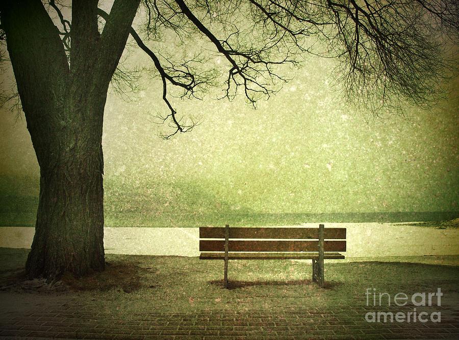 Bench Photograph - Solitude by Tara Turner