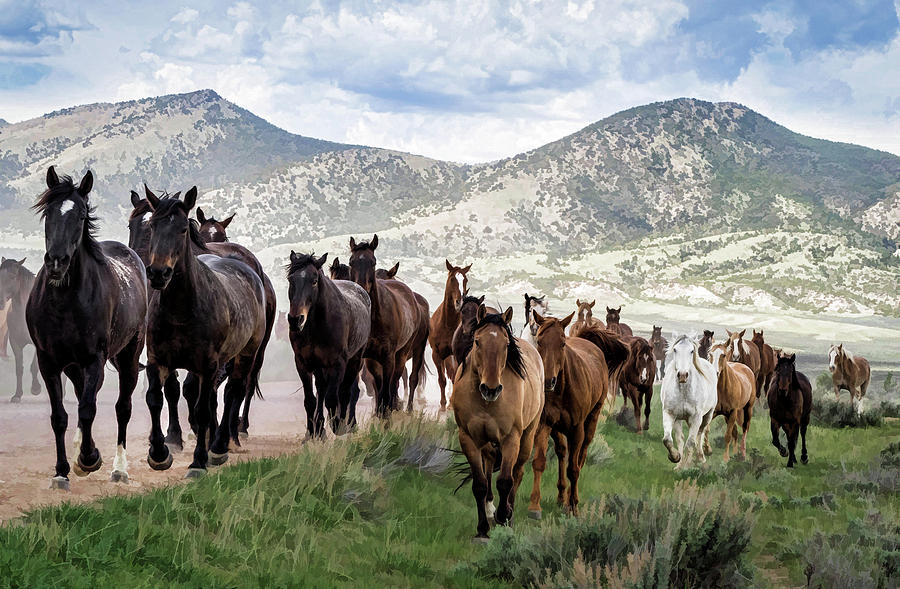 Sombrero Ranch Horse Drive, an annual event in Maybell, Colorado by Nadja Rider
