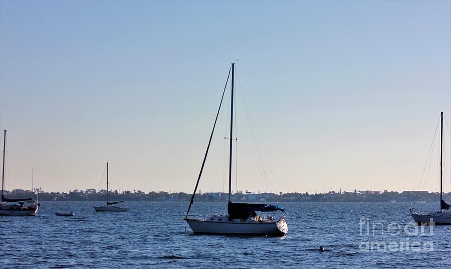 Sail Boat Photograph - Something In The Water by Mesa Teresita
