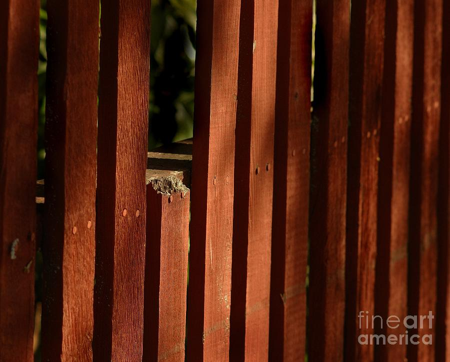 Fences Photograph - Somethins Missing by Norman Andrus