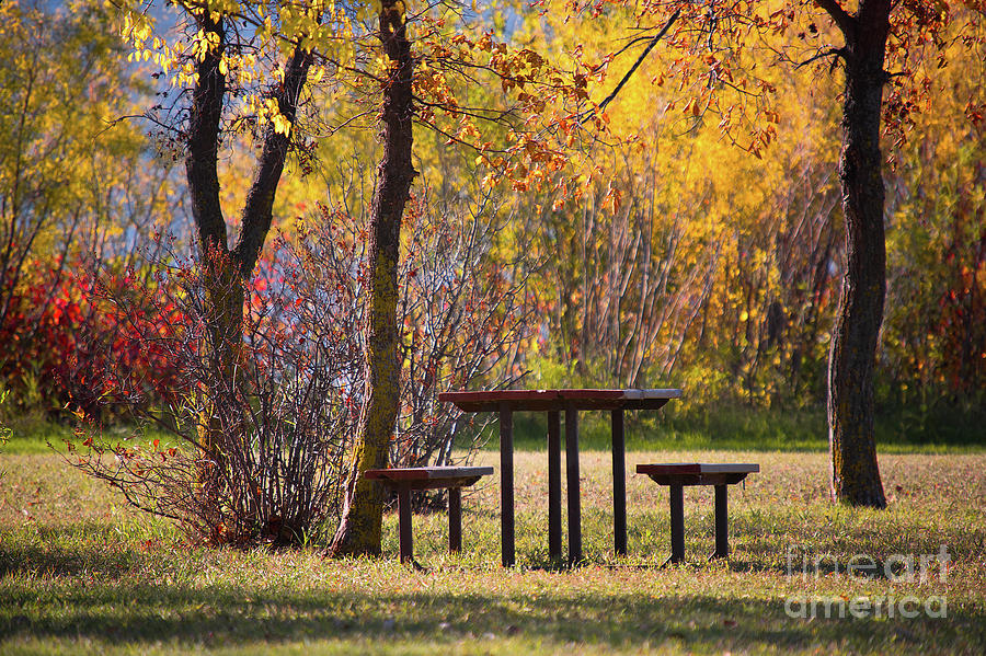 Bench Photograph - Somewhere In Autumn by Ian McGregor