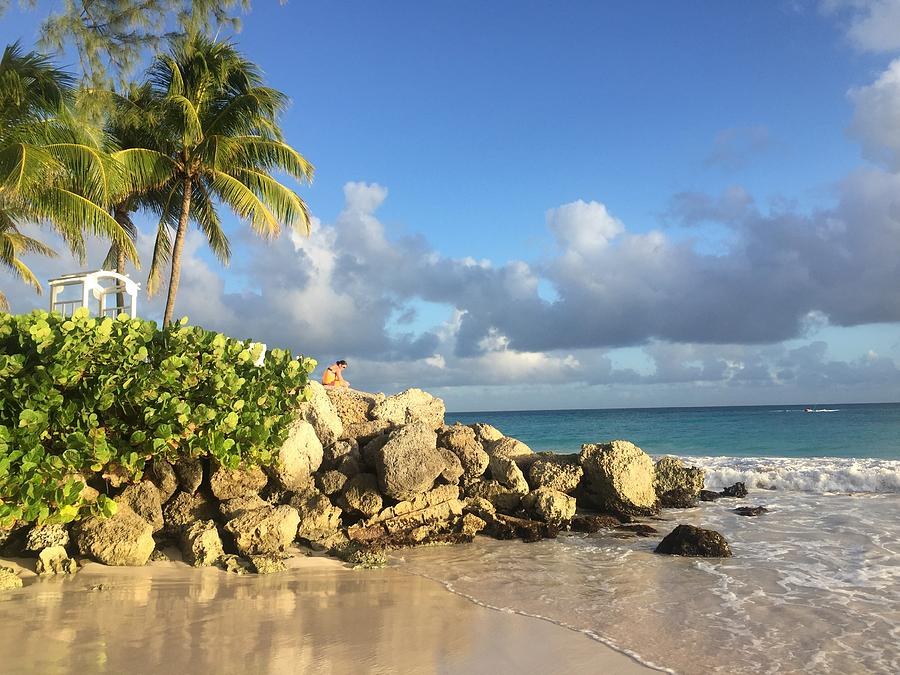 Caribbean Photograph - Somewhere in Barbados by Cindy Ross