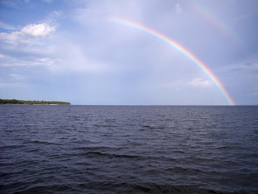 Rainbow Pyrography - Somewhere Over . . . by Nicole I Hamilton
