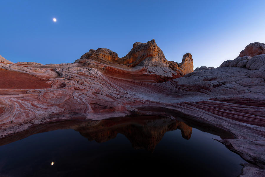 White Pocket Photograph - Song Of The Desert by Dustin LeFevre