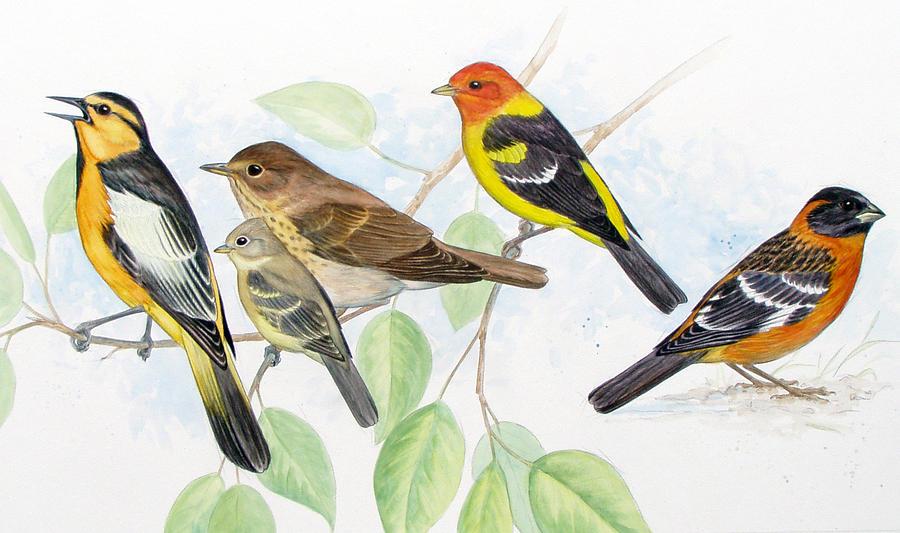 Songbird Painting - Songbirds by Shari Erickson