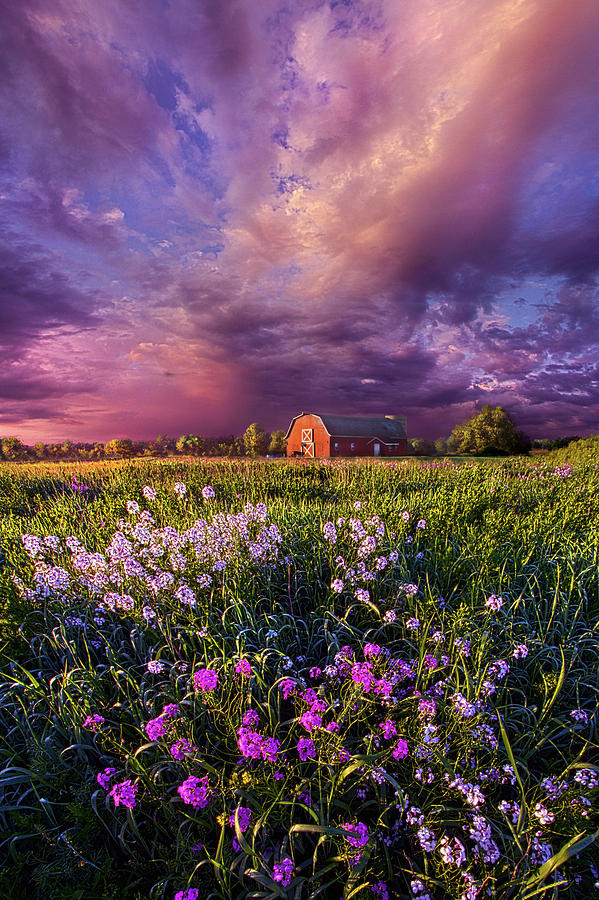 Barn Photograph - Songs Of Days Gone By by Phil Koch
