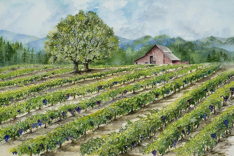 Sonoma County Painting - Sonoma County Vineyard by Virginia McLaren