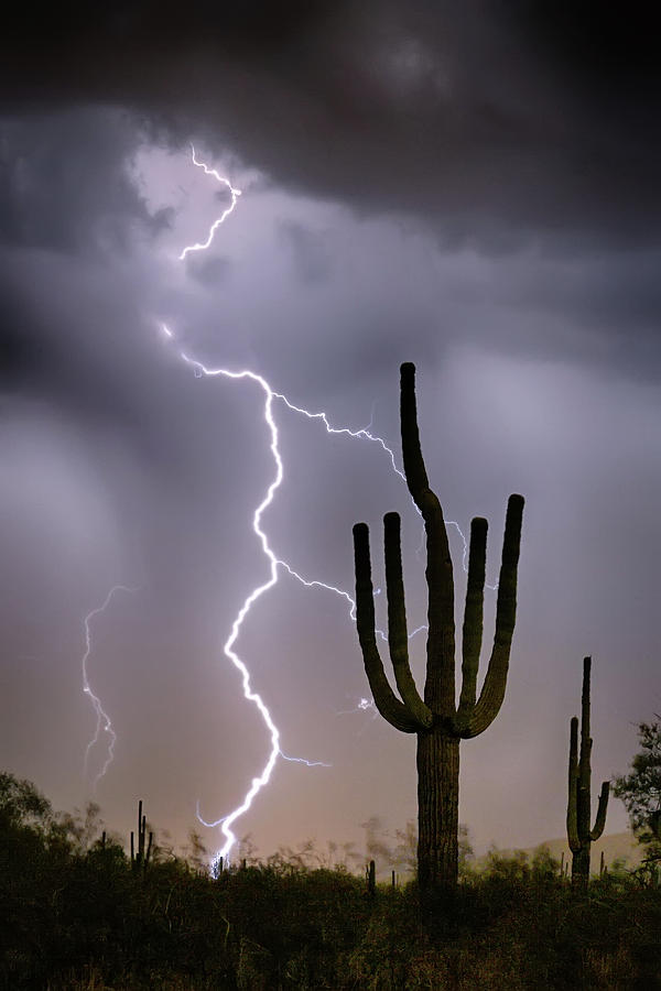 Monsoon Photograph - Sonoran Desert Monsoon Storming by James BO Insogna