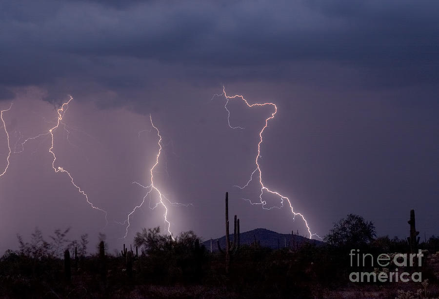 Lightning Photograph - Sonoran Storm by James BO  Insogna