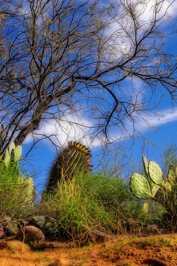 Sonoran Warmth Op6 Digital Art