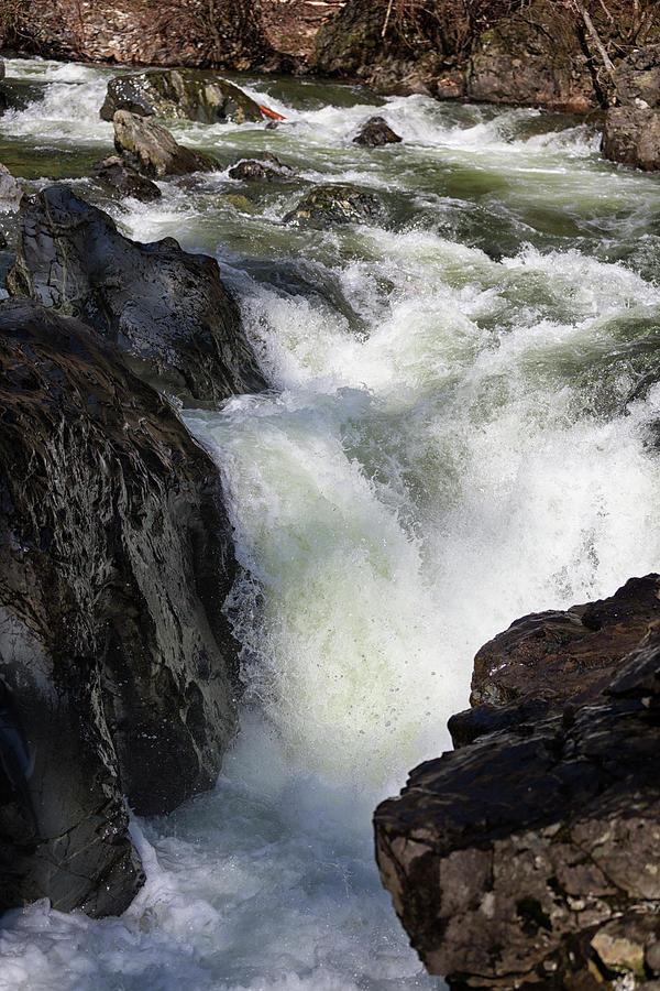 Sooke River Photograph