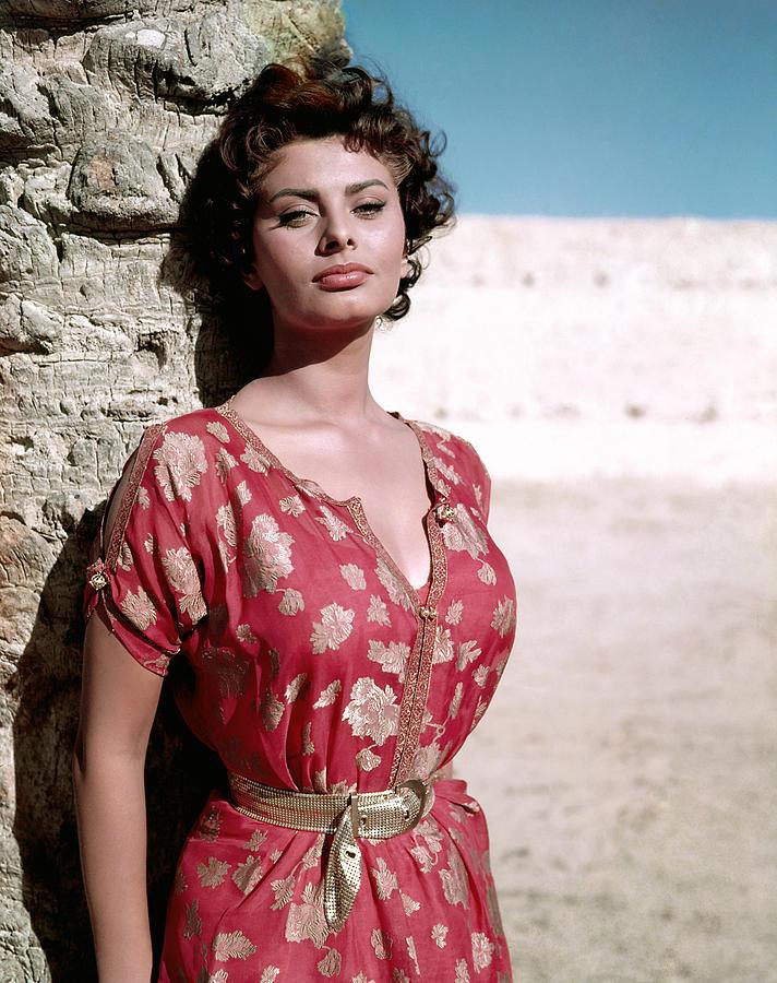 Loren Photograph - Sophia Loren, 1950s by Everett