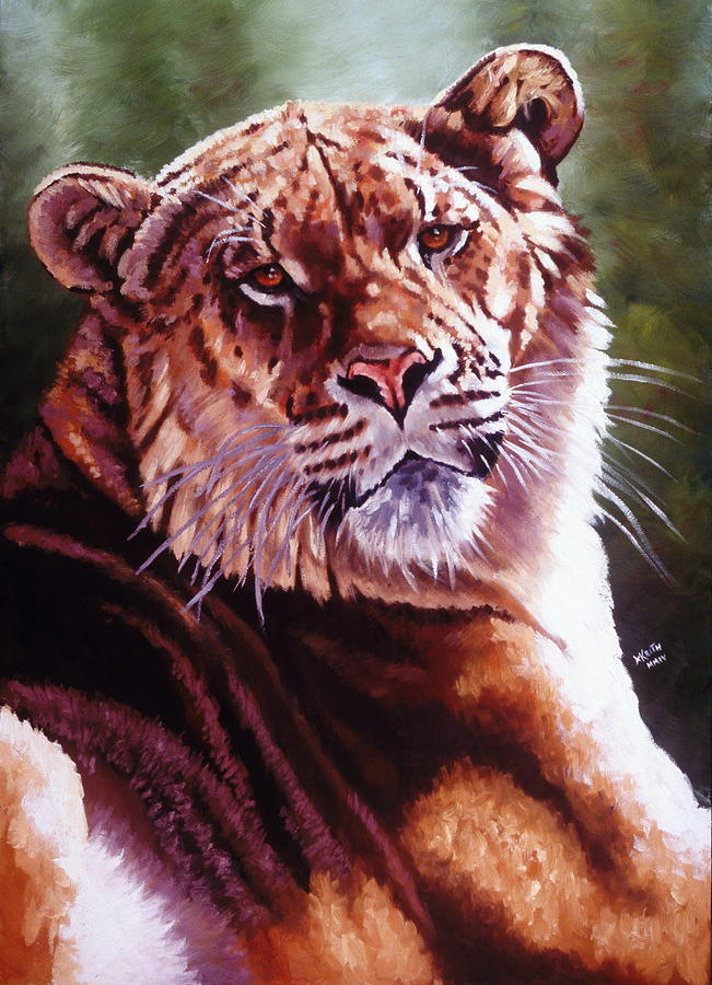 Hybrid Painting - Sophie The Liger by Barbara Keith