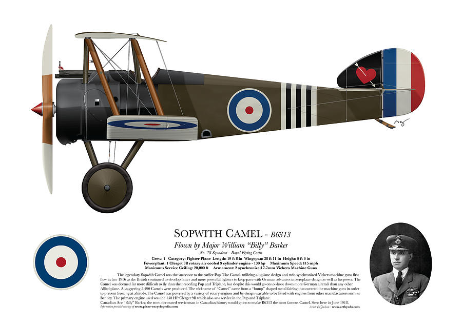 Sopwith Digital Art - Sopwith Camel - B6313 June 1918 - Side Profile View by Ed Jackson