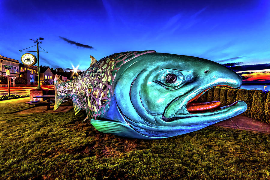 Soul Salmon During Blue Hour by Rob Green