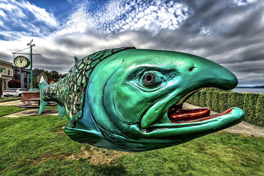 Soul Salmon in HDR by Rob Green