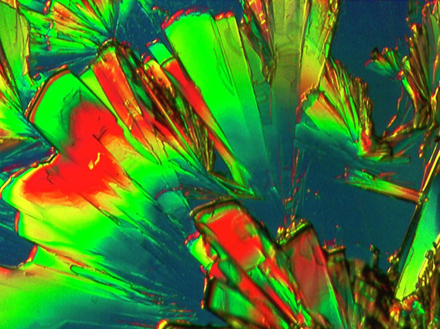SOUR - citric acid by Sondra Barrett