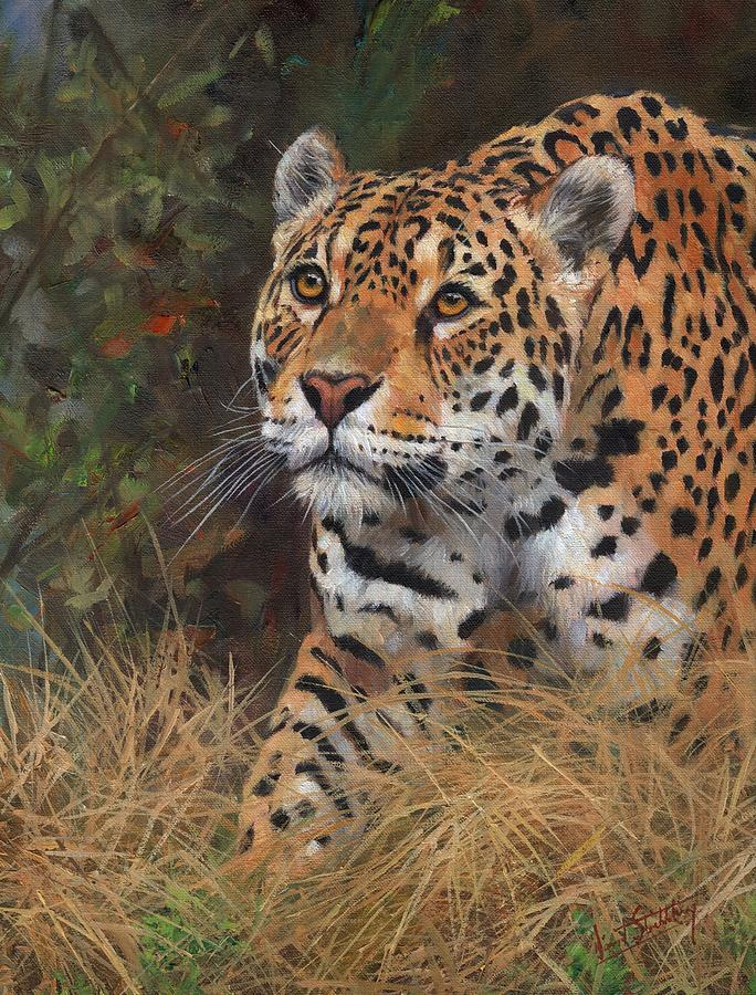 Jaguar Painting   South American Jaguar Big Cat By David Stribbling