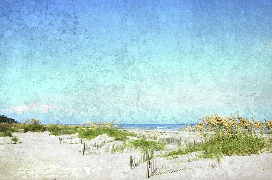 South Carolina Beach Photograph by Guy Crittenden