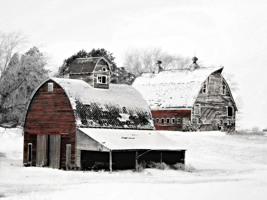 Christmas Photograph - South Dakota Farm by Julie Hamilton