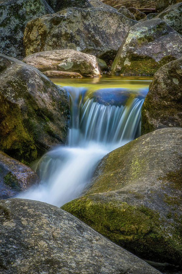 South Mtn State Park-1 by Joye Ardyn Durham