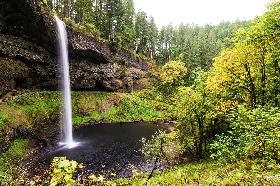 South Silver Falls 2 by Jedediah Hohf