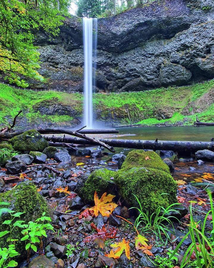 South Silver Falls 3 by Jedediah Hohf