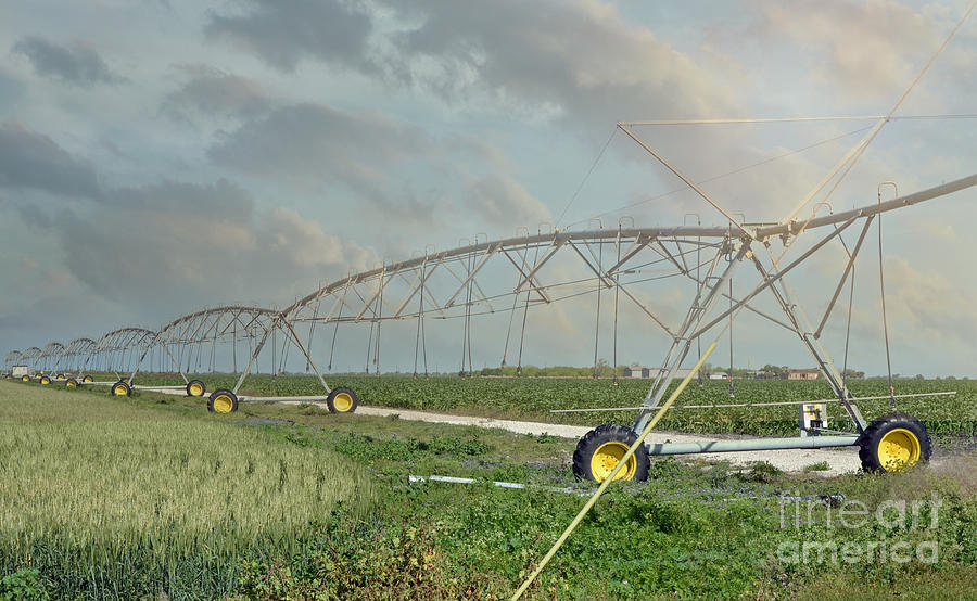 Texas Photograph - South Texas Irrigation by Darla Rae Norwood
