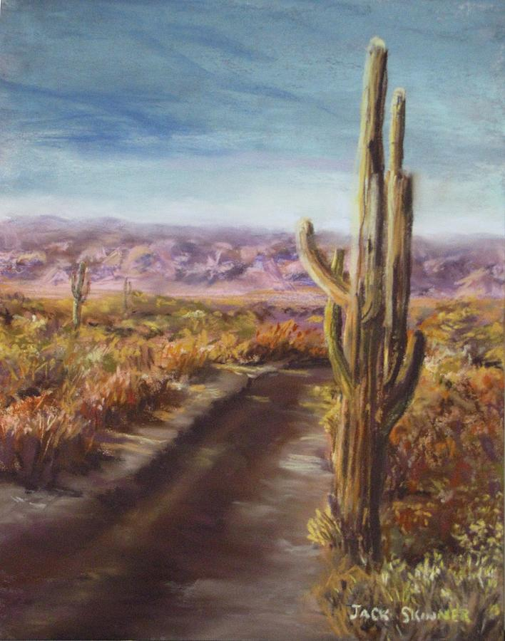 Desert Painting - Southern Arizona by Jack Skinner