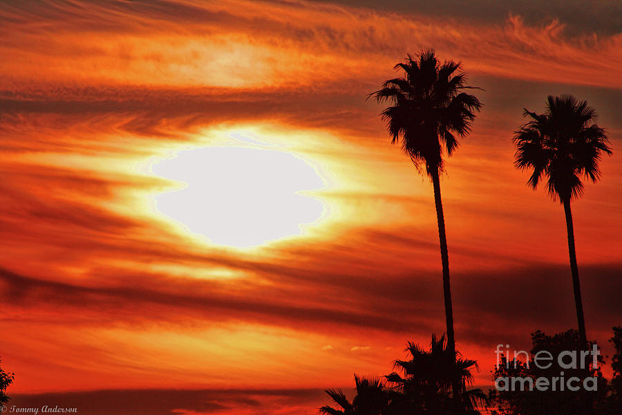 Sunset Photograph - Southern California Sunset by Tommy Anderson