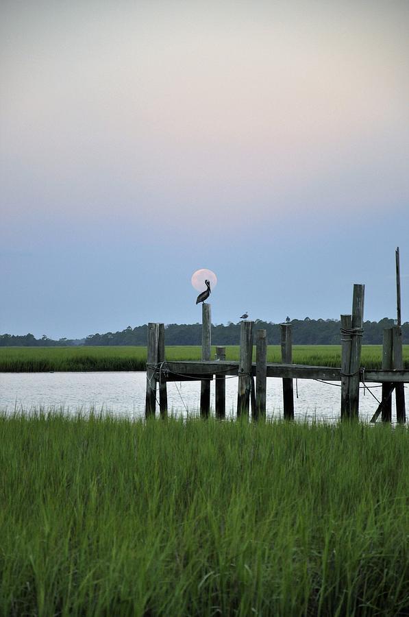 Full Moon Photograph - Southern Serenity by Sally Falkenhagen
