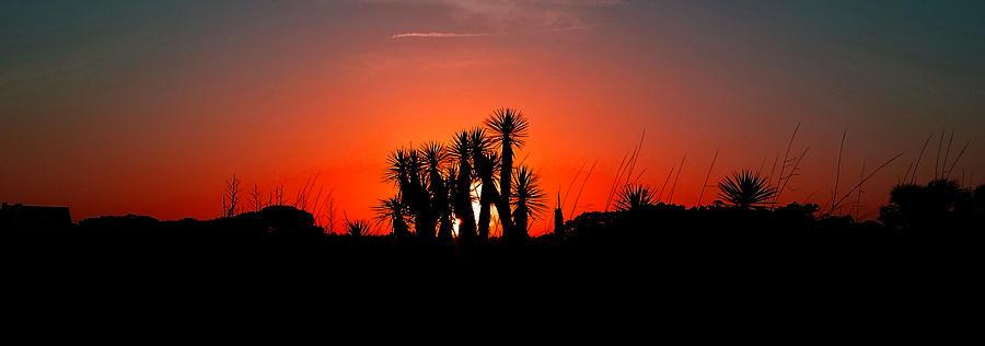 Southern Sunset Photograph