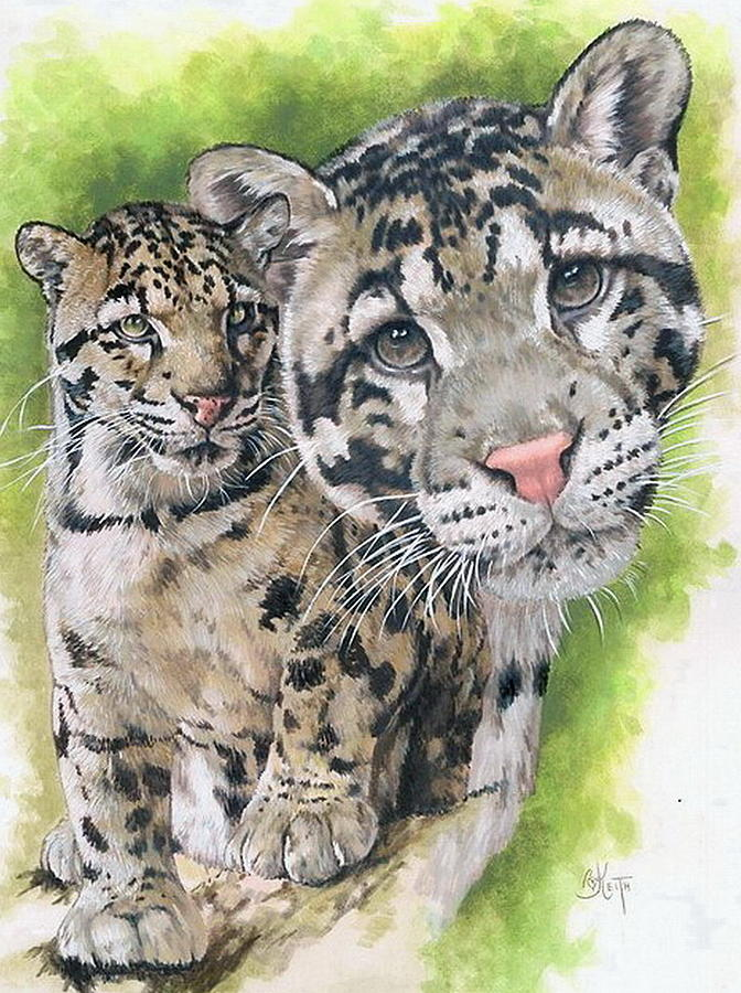 Clouded Leopard Mixed Media - Sovereignty by Barbara Keith