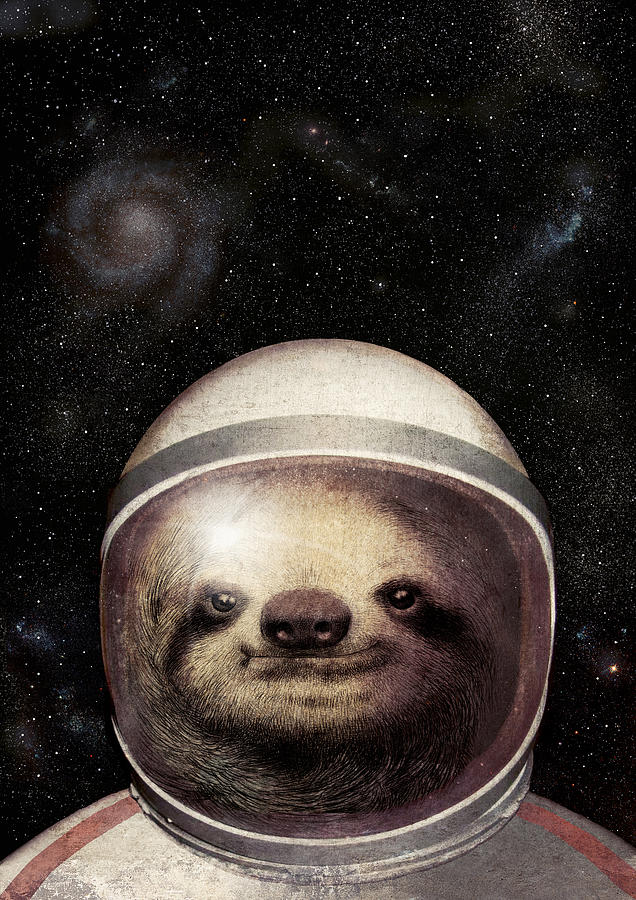 Space Sloth Drawing by Eric Fan